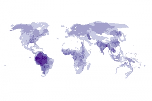 Global Distribution of Iconic Freshwater Megafauna