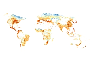 Global Distribution of Agricultural Insecticides in Streams
