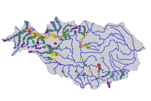 Situation and Prioritisation of Barriers along the Danube for Restoration of the Longitudinal Connectivity