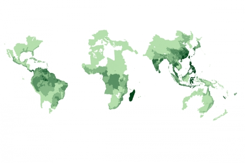 Global Freshwater Shrimp Species Richness